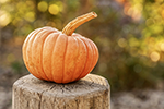 Photo of a pumpkin saved as a PNG